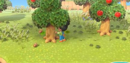 集合啦动物森友会橡实和松果怎么得 橡实和松果获取方法