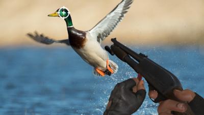 野外獵鴨模擬器截圖(2)