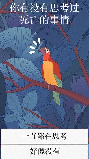 孤独的鹦鹉截图(4)