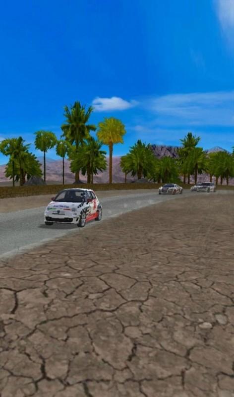 极速拉力赛车截图(3)