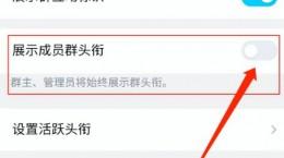QQ群顯示頭銜教程