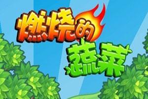 燃燒的蔬菜小游戲