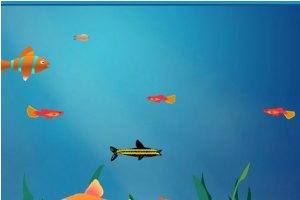 大鱼吃小鱼双人版无敌版小游戏