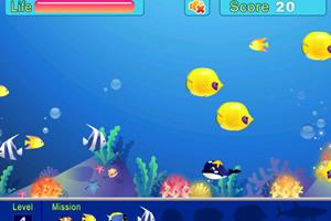 大鱼吃小鱼双人版小游戏